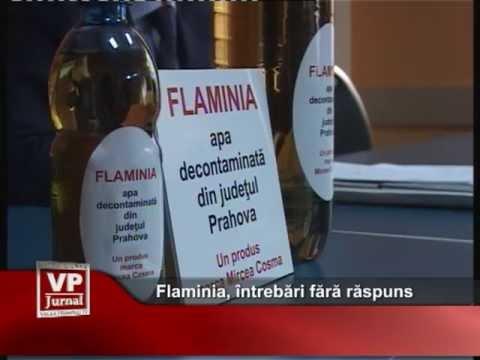 Flaminia, întrebări fără răspuns