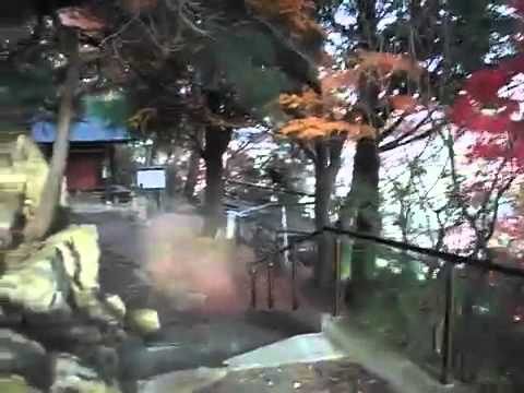 Japan: Radiation 0.71 USv/h In Air, 4.83 USv/hr On Ground, IWAYA Cannon Temple, Fukushima City
