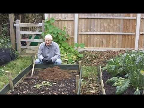 My New Permaculture Type Raised Bed Vegetable Garden