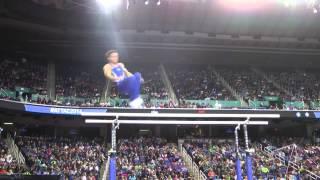 Sam Mikulak - Parallel Bars - 2014 AT&T American Cup