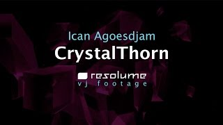 CRYSTAL THORN LOOPS RELEASED