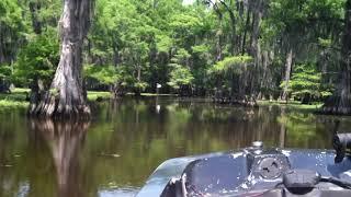 Video Running the boat lane-Caddo Lake Texas Memorial Day 2012 MP3, 3GP, MP4, WEBM, AVI, FLV Maret 2019