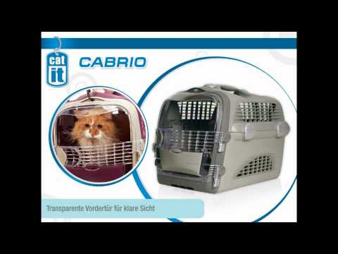 Transportbox - http://www.zooroyal.de/hunde-shop/transport-unterwegs/hundetransportbox/transportbox-pet-cargo-cabrio-weiss-grau-orange.html Reisen mit System in der Transpo...