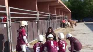 Video Lamotte Beuvron 2015 - HorseBall Poussins 4 - Les écuries du Vallon MP3, 3GP, MP4, WEBM, AVI, FLV Mei 2017