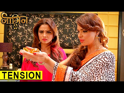 Shesha In TENSION To Find Yamini | नागिन