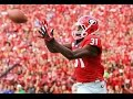 Chris Conley Career Highlights