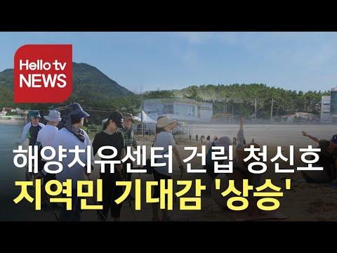 완도군, 해양치유산업 ′탄력′