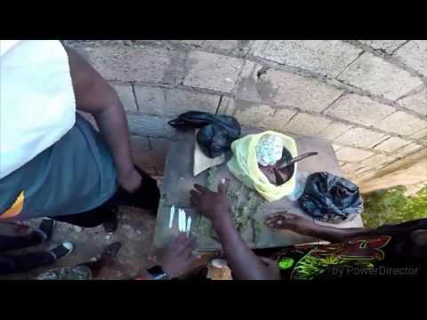 Buying a pound of weed in 9mile Jamaica from duke, gopro