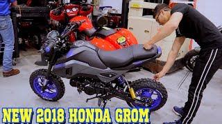 10. NEW 2018 HONDA GROM !