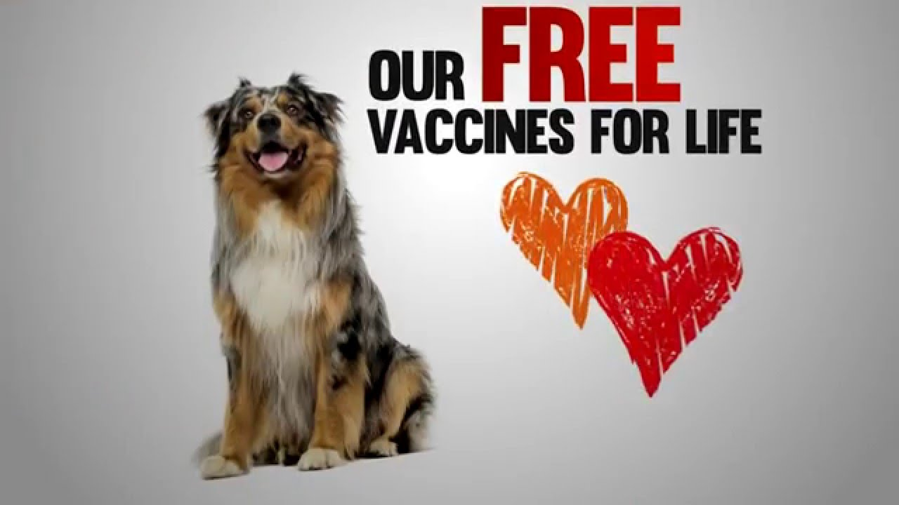 Video: Free Vaccines for Life