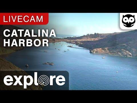Live-Cam: USA - Catalina Island - Catalina Harbor - ...