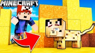 Video PYSIA KOTEK KAMUFLAŻ TROLL?! - ZABAWA W CHOWANEGO W MINECRAFT (Hide and Seek) | Vito vs Bella MP3, 3GP, MP4, WEBM, AVI, FLV Maret 2019