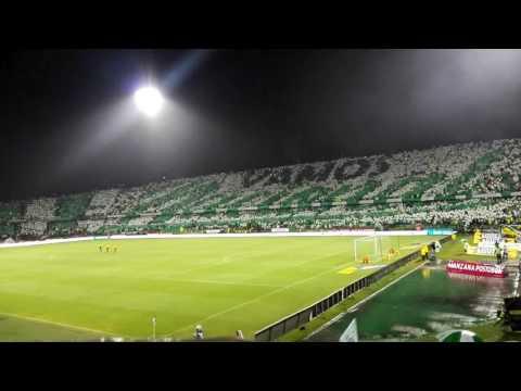 Atlético Nacional 1vs 0 millonarios - Los del Sur - Atlético Nacional