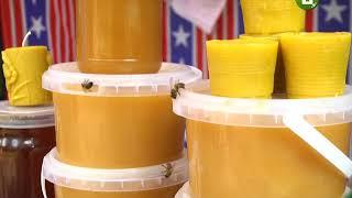 Фестиваль «Медовий Спас» другий день триває у Хмельницькому