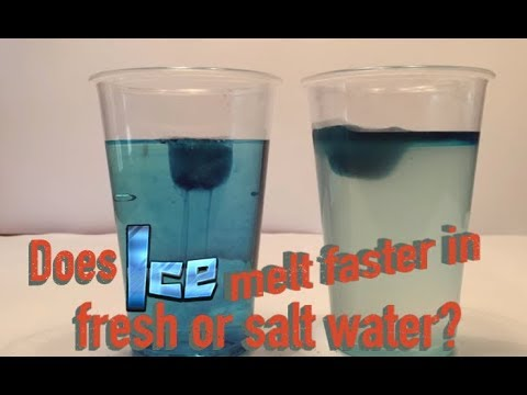 DOES ICE MELT FASTER IN FRESH OR SALT WATER? Experiment