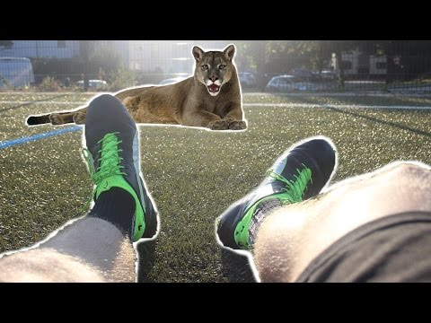 PUMA evoTOUCH - best leather boot?! - TEST/ REVIEW