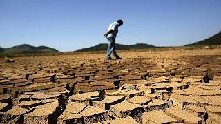 Brezilya yüz yılın en şiddetli kuraklığıyla karşı karşıya