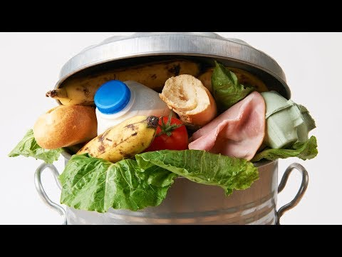 Stopping Food Waste