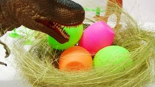 Hatching T-Rex Dinosaur Eggs - Toy Dinosaurs for Kids