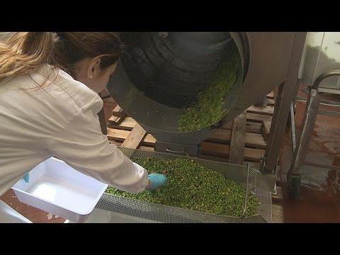 Βιοπλαστικά από υπολείμματα λαχανικών – futuris