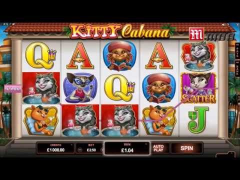 M88 Slot Games mới, Furry kittens, Pistoleras & hounds. Xem ngay!!!