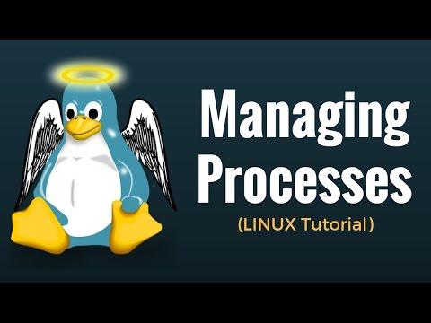 Managing Processes - Linux Tutorial 13 (видео)