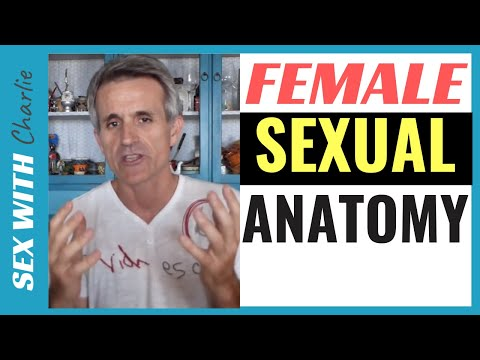 female anatomy - http://HowToMakeYourWomanEjaculate.com CLICK ON THIS LINK FOR MORE INFORMATION Learn everything about the female anatomy and how to satisfy a woman in bed. L...