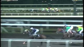 RACE 13 DREAM SUPREME 09/28/2014