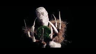 BaianaSystem e Titica - Capim Guiné feat. Margareth Menezes