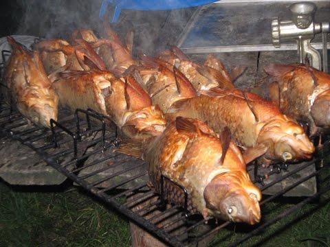 походы в тайгу с рыбалкой