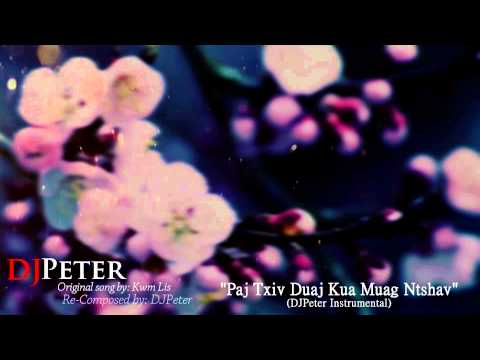 Kwm Lis - Paj Txiv Duaj Kua Muag Ntshav (DJPeter Instrumental) (видео)