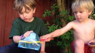 bNosy video 5 - paja påse med pennor