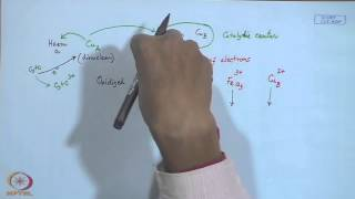 Mod-07 Lec-07 Electron Transport Proteins - III