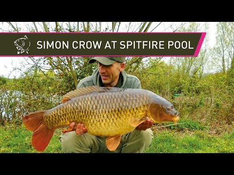 Carp Fishing at Spitfire Pool with Simon Crow
