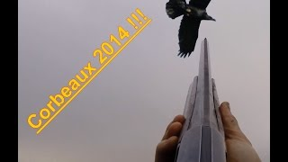 Chasse Aux Corbeaux : Compilation Tirs Corbeaux 2014 - Caméra GoPro