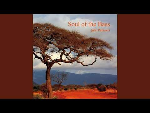 Soul Of The Bass online metal music video by JOHN PATITUCCI