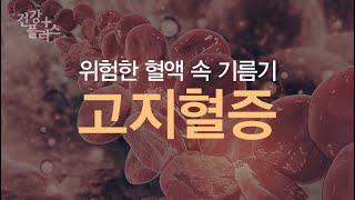 위험한 혈액 속 기름기, 고지혈증