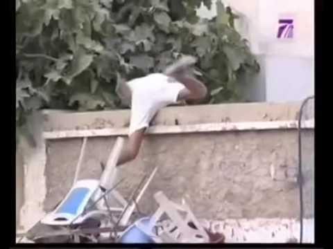 Video hài Các cảnh tượng con người sợ chó.cười té ghế :))