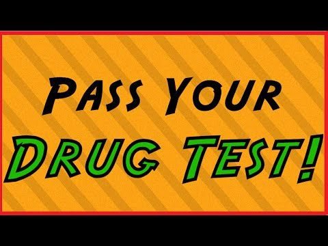 how to pass a drug test the day of