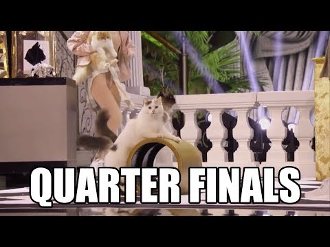 The Savitsky Cats America's Got Talent 2018 Quarter Finals|GTF