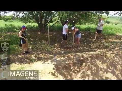 Reflorestamento da Mata Ciliar do Rio Paraíba do Sul - Iterere - São Fidelis