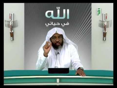 الله في حياتي  – الديان ج2 – الشيخ إبراهيم أيوب