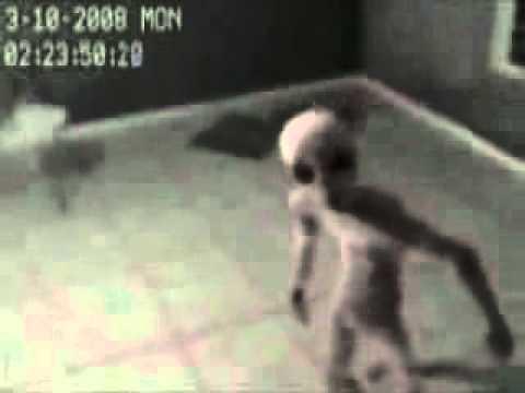 alieno catturato e tenuto in una stanza