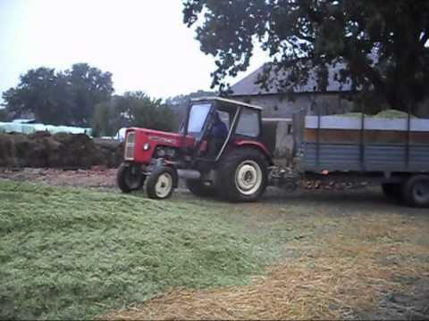 Kukurydza 2011 w Wielkopolsce
