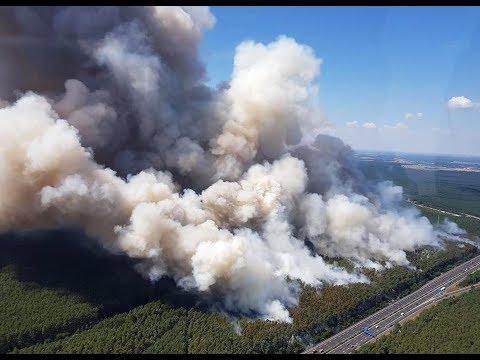 Waldbrand nahe Potsdam: Feuerwehr rettet Fichtenwalde ...