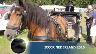 ICCCR wereldmeeting Nederland 2016 / 1 by: Coos van den Elsen