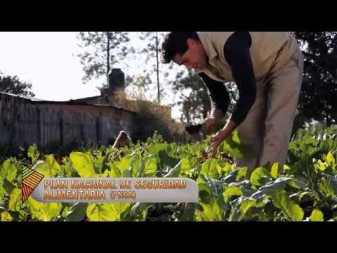 Ver el video Proyecto Nuestros Alimentos Tradicionales