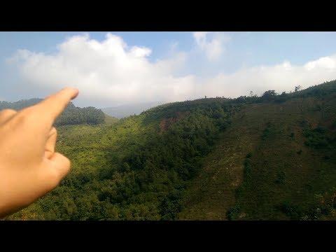 Picnic Cuối tuần - Vào rừng tìm Nhân sâm