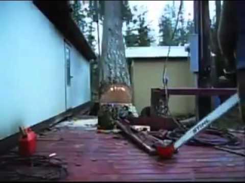 Ovaj drvosječa će vas oduševiti, jer može da ga protjera gdje hoće! (video)