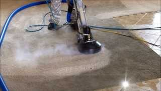 Carpet Cleaning – Trashed Carpet